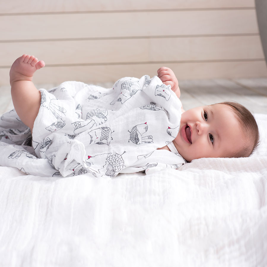 classic-swaddle-love-bird-sq