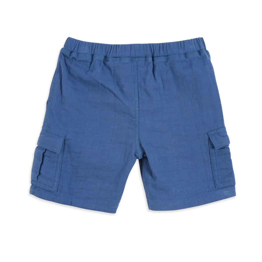 cargo-shorts-true-navy-back