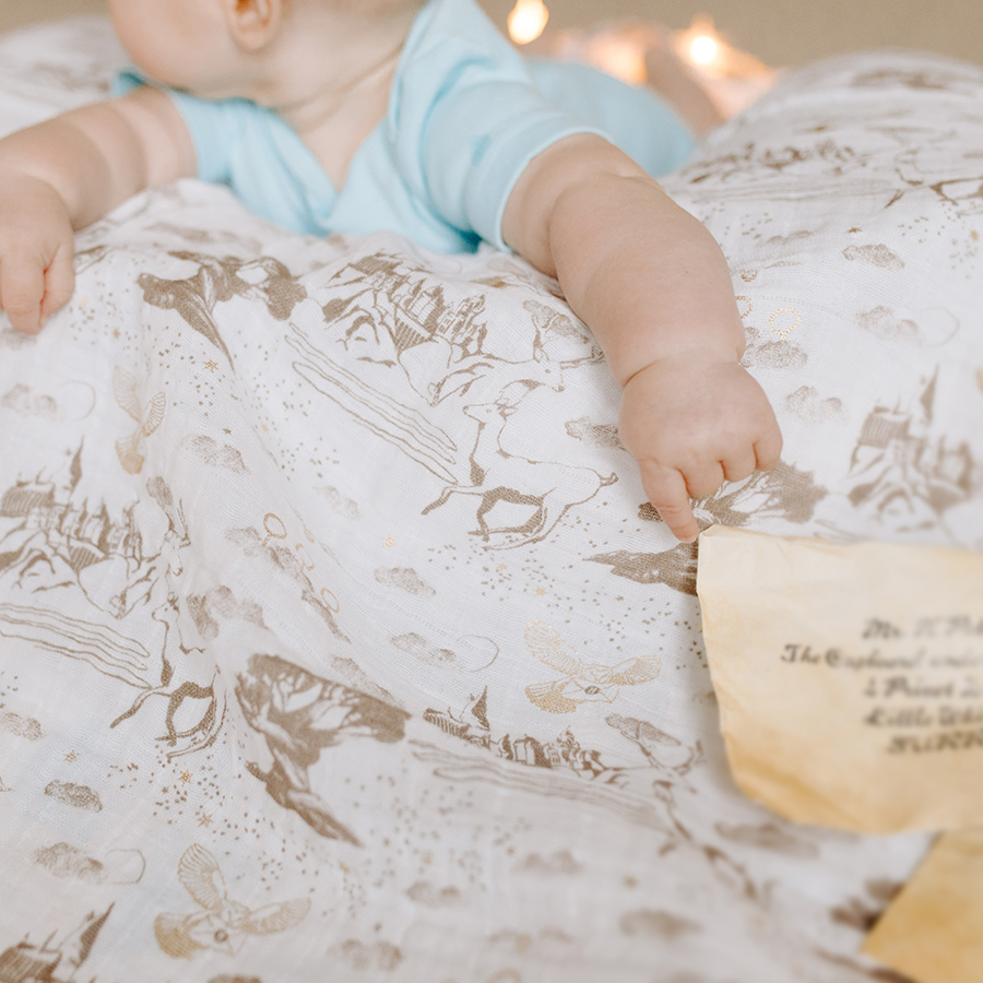 classic-single-swaddle-hogwarts-grounds-harry-potter